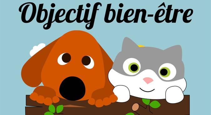 Objectif N°1, le bien-être de votre chien, dog sitter à Saint-martin-d'heres