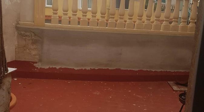 Piso animalista con mucho amor!, canguro en Murcia, España