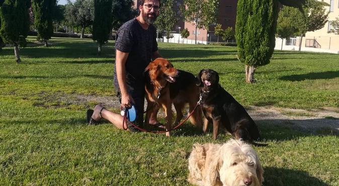 La casa de tus perros, canguro en Alcorcón