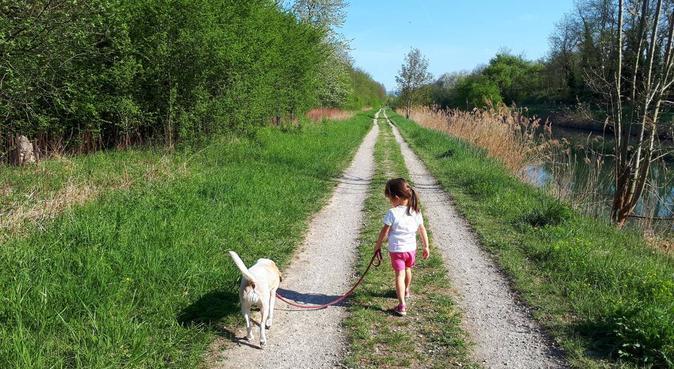 Un hâvre de bonheur et de câlins, Hundesitter in Saint-Louis