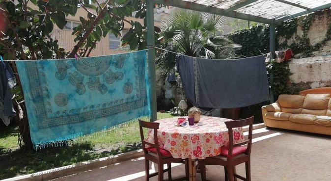 gioco, passeggiate e tanto amore per i cani, dog sitter a Napoli, NA, Italia