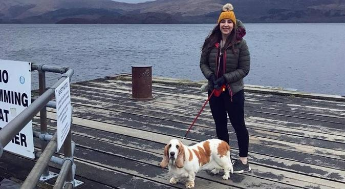 Brenda's Dog Walks & Day Sitting, dog sitter in Glasgow