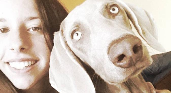 Coccole, divertimento e spazi verdi per correre!, dog sitter a Milano