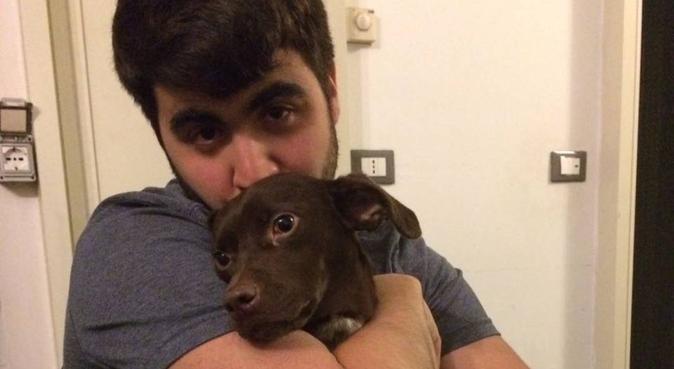 Un amico dei cani per il tuo cane, dog sitter a Torino
