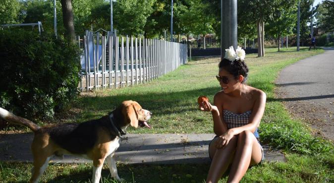 Sweet home for Sweet dogs, canguro en Hospitalet de Llobregat