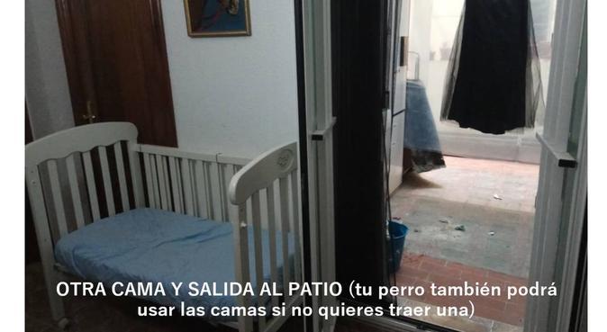 Mami cat-perruna. Amor, aire libre y seguridad., canguro en Granada