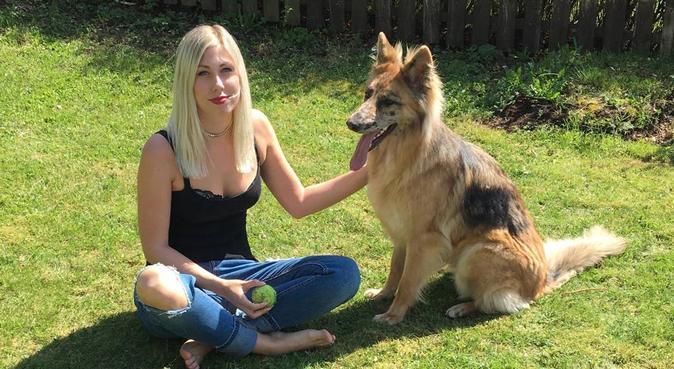 Hundkompisar sökes till väluppfostrad 24åring., hundvakt nära Johanneshov