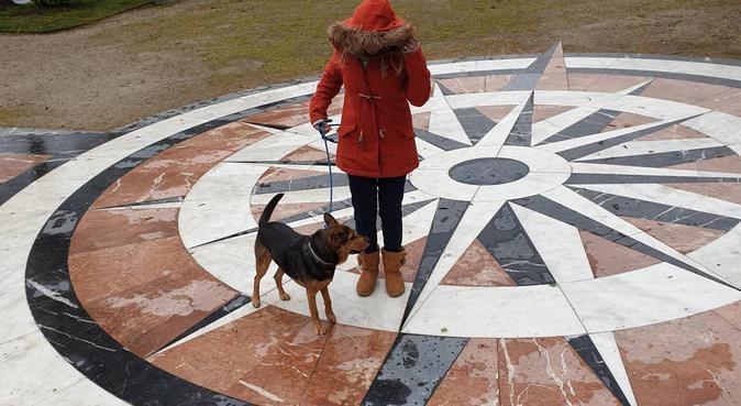 Cuidare de tu mascota como si fuera mio, canguro en Ferrol, España