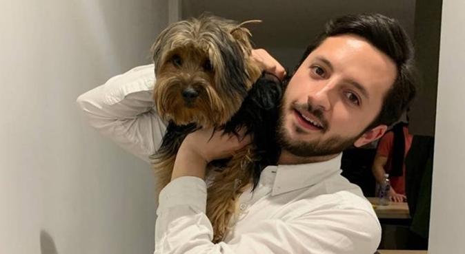 Tu perro como en casa !!, canguro en Madrid, España