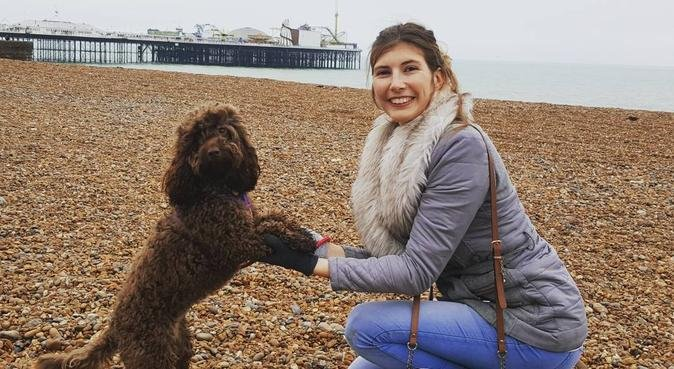 TLC walks & daycare in central house with garden!, dog sitter in Brighton