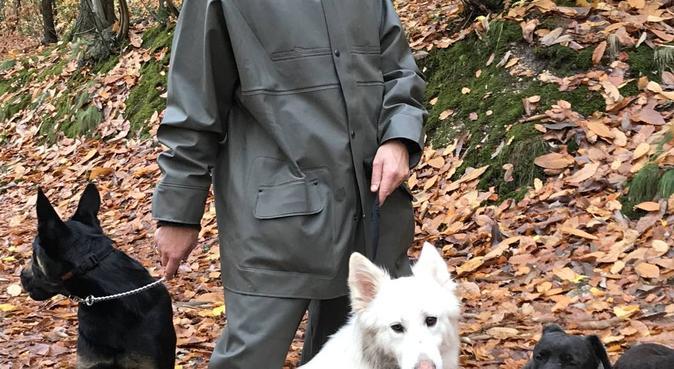 Comme à la maison / 100% câlins et bien être, dog sitter à Versailles, France