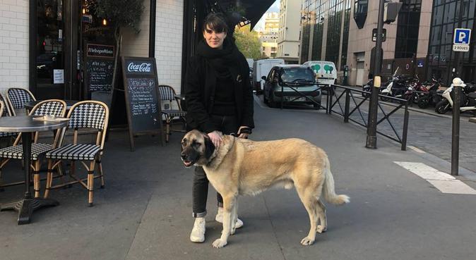 Dogsitter Parisienne, dog sitter à Paris, France