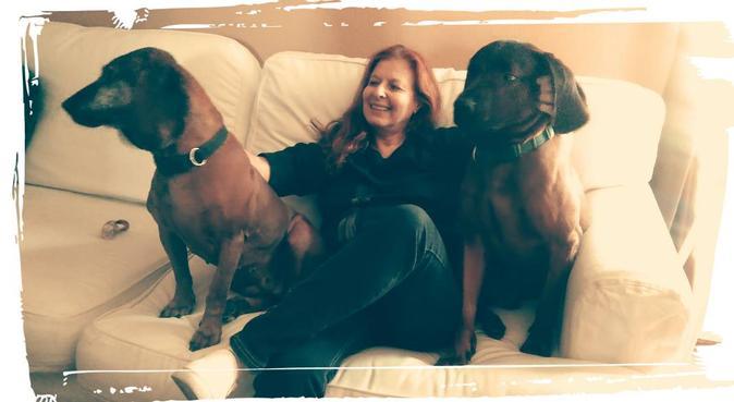 Cuidamos de tu mascota en un hogar familiar, canguro en madrid