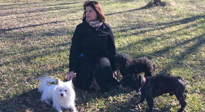 Amore e rispetto per i vs amici a 4 zampe, dog sitter a montegrotto terme