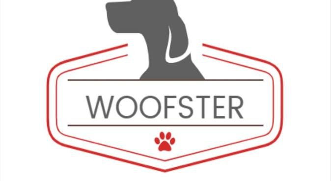 Woofster, dog sitter in Harlow