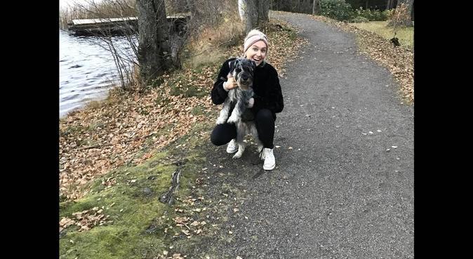 Bästa hundvakten för en lycklig vovvis, hundvakt nära Örebro