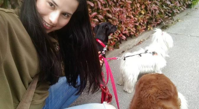 Tutti felici, dog sitter a Padova