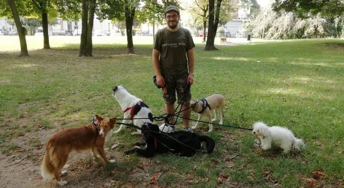 Addestratore cinofilo con qualifica ENCI, dog sitter a Nova Milanese
