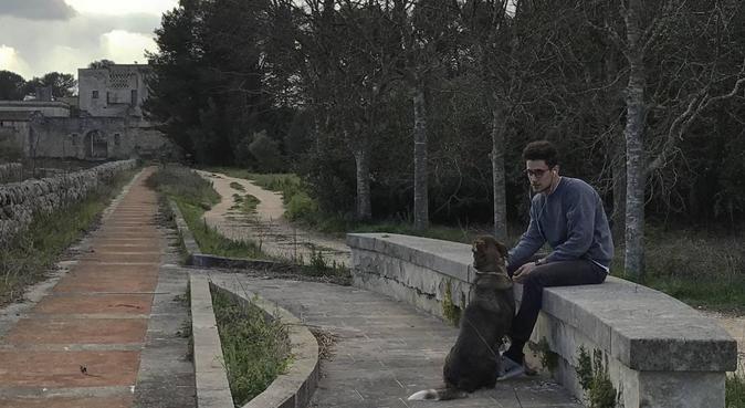 Coccole, salute e svago 🎾, dog sitter a Bari, BA, Italia