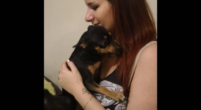 Amoureuse des animaux j'en prendrais soin !, dog sitter à Franconville