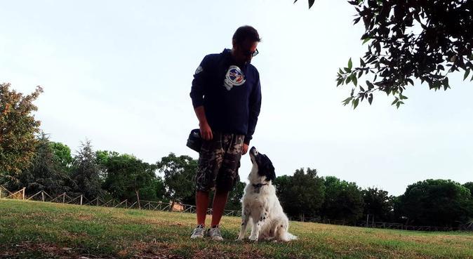 Passione esperienza e serietà a vs. servizio!, dog sitter a Roma