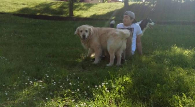 Un sitio donde tu perro es uno mas de la familia., canguro en bilbao