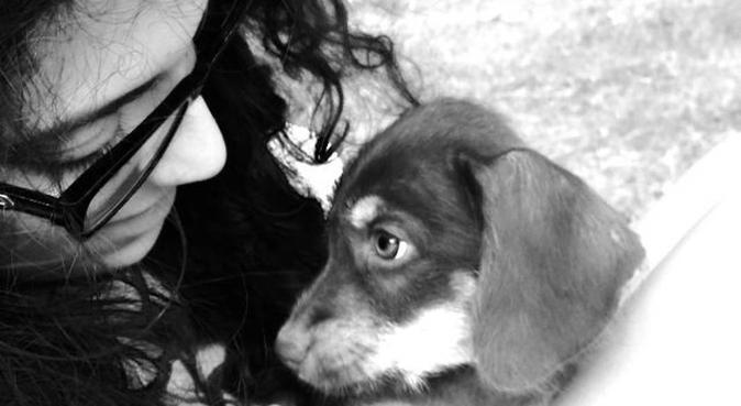 Passione, amore e rispetto per il tuo amico!, dog sitter a Torino