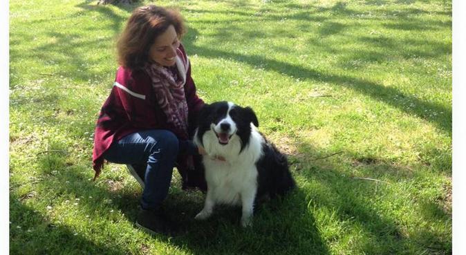 Passeggiate e relax con operatrice cinofila, dog sitter a Rimini