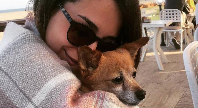 Passeggiate, sorrisi, giochi e tante coccole ❤, dog sitter a Pirri