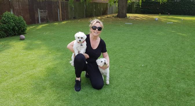 Loving Dog Boarding in large family home-Cheshunt, dog sitter in Cheshunt