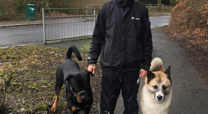 Cumbernauld Canine Care, dog sitter in Cumbernauld