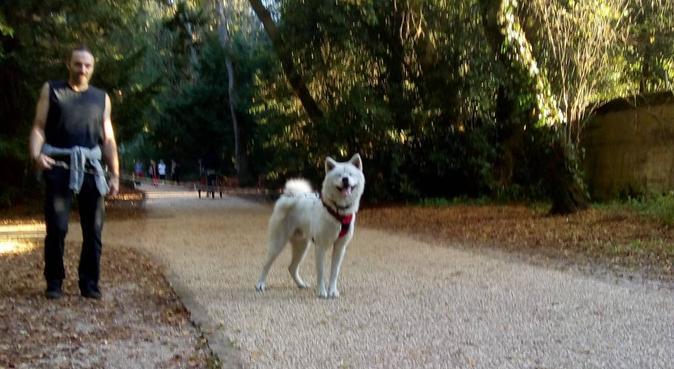 Garde de chien à votre domicile, dog sitter à Pessac