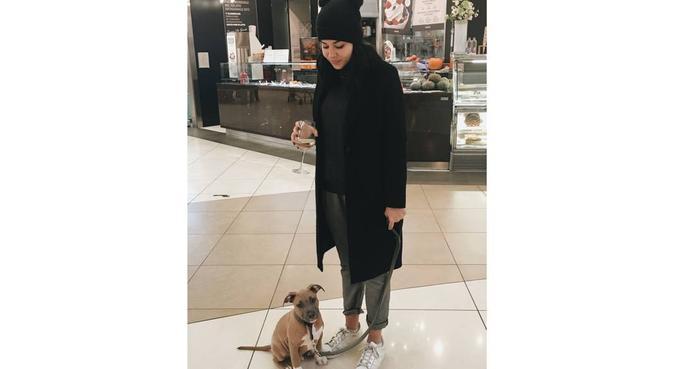 UNA NUOVA AMICA PER IL TUO PET!, dog sitter a Sant'Agostino, Albignasego PD, Italia