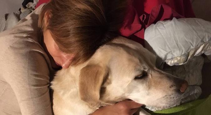 Sarà amore a prima vista, dog sitter a Firenze