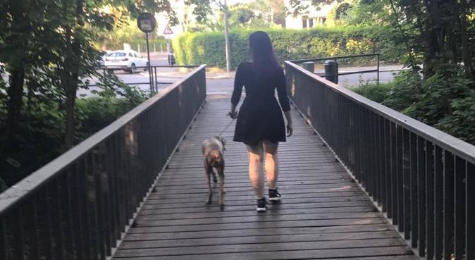 Leipzig's fürsorglichste Hundesitterin, Hundesitter in Leipzig