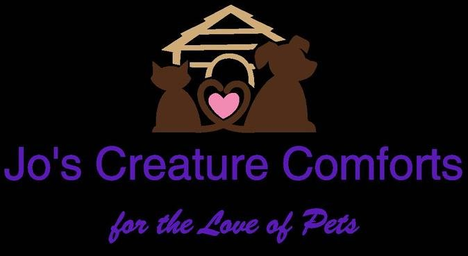 Doggy Day Camp -    Walk, Stay & Play Pet Services, dog sitter in Crawley