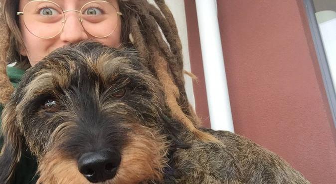 !  Vacances pour Chiens ! Disponible fin août, dog sitter à Issy-les-Moulineaux