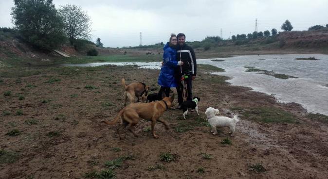 Bienvenidos a mi manada, canguro en Alfara del Patriarca, España