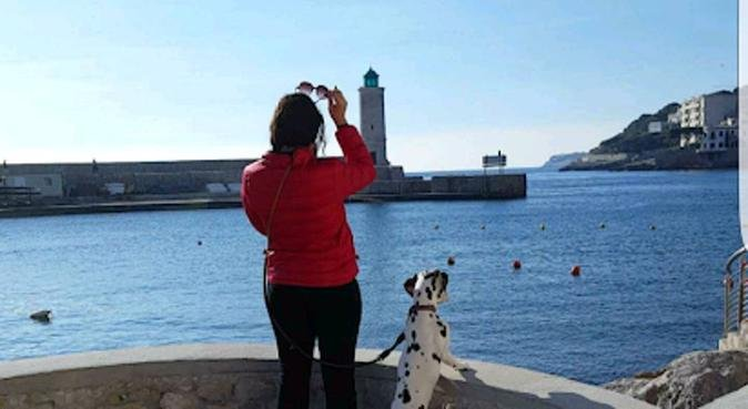 Dog loveuse, dog sitter à Marseille