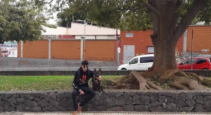 La música y los perros son la mejor combinación!, canguro en San Cristóbal de La Laguna, España