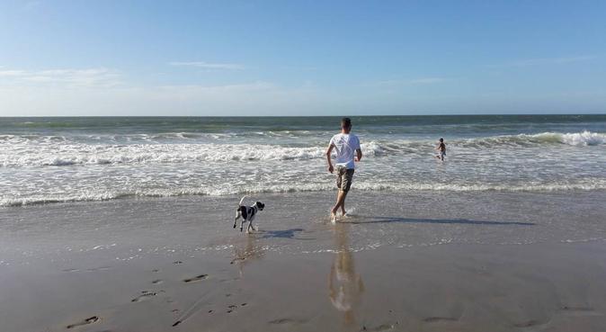 Actieve en sportieve Dogbuddy Rotterdam Blijdorp, hondenoppas in Rotterdam
