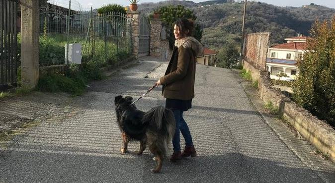 Petsitter&Dogwalker in Lucca, dog sitter a Lucca