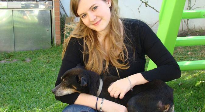 Dog lover and vet student, Hundesitter in Koln