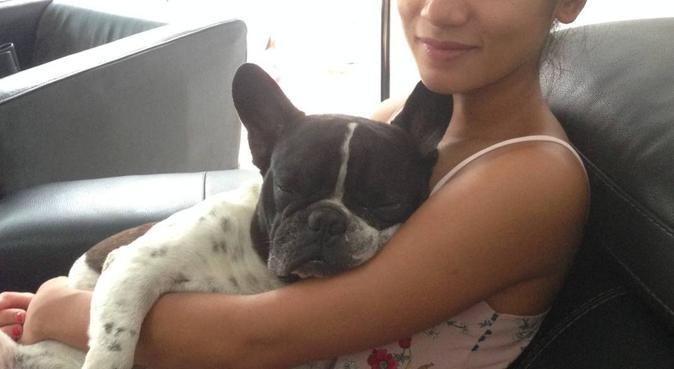 Je garde et chouchoute votre toutou 🐶🥰, dog sitter à Marseille, France
