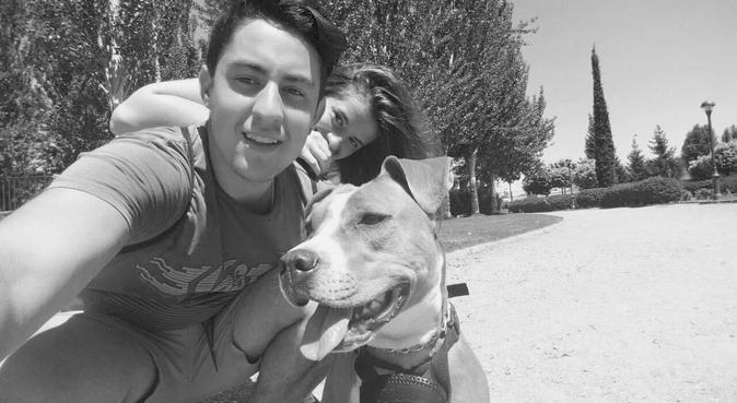 Que mejor compañía para pasear que un perro, canguro en Valladolid