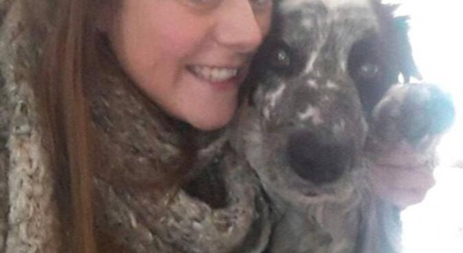 Vrouw zoekt hond, hondenoppas in Rotterdam