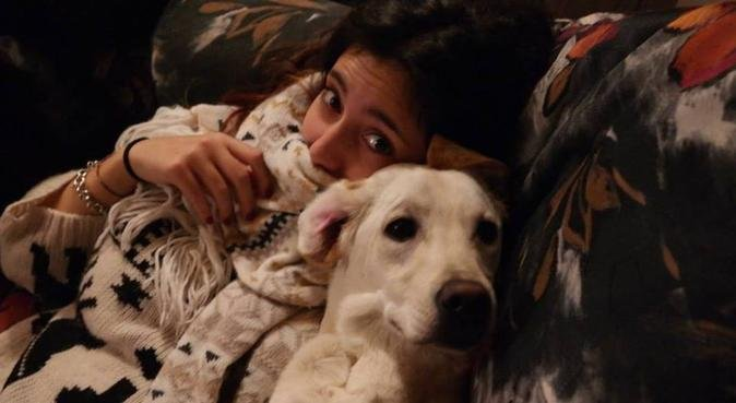 Lunghe passeggiate con gli amici a 4 zampe!, dog sitter a Perugia