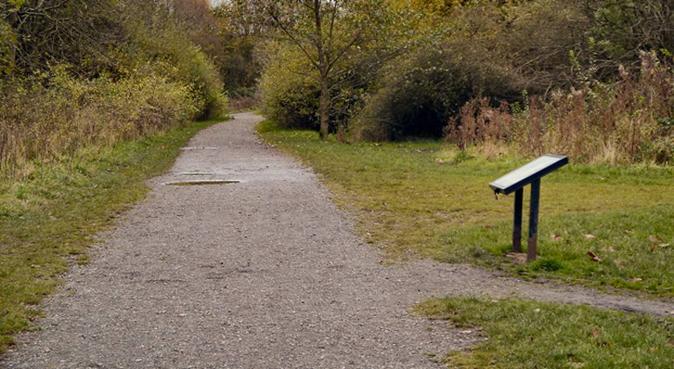 pet sitter - speaks EN, IT, PT and understands ES, dog sitter in Manchester