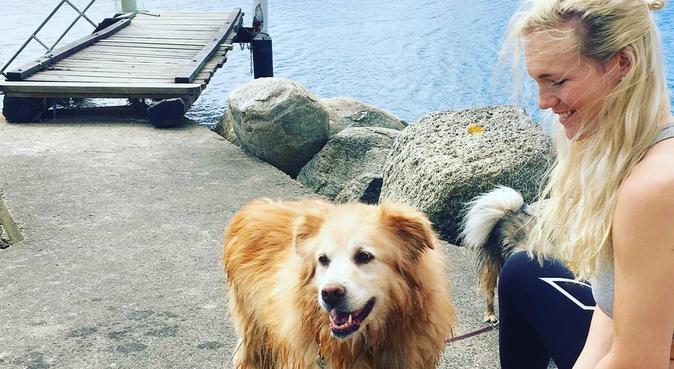Hundpassning av djurkär 26-åring, hundvakt nära Stockholm