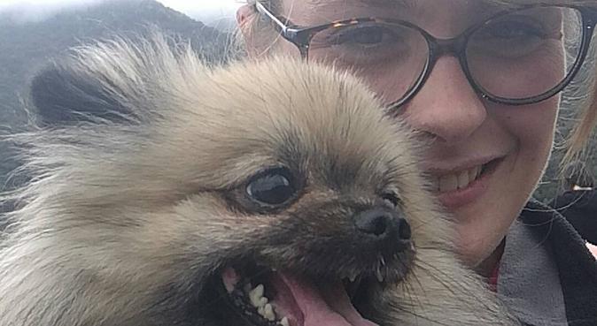 Amoureuse des chiens et dévoué aux animaux, dog sitter à Arles, France